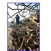 Заготовка, переработка и последующая реализация лома черных металлов фото
