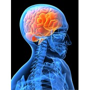 Неврология — раздел медицины, занимающийся вопросами возникновения заболеваний центральной и периферической нервной системы, механизмы их развития, симптоматику и возможные способы диагностики, лечения и профилактики. фото