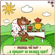 "Вклад ""Кубышка"" фото"