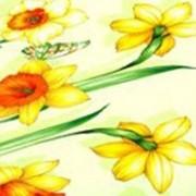 Ткань постельная Бязь 100 гр/м2 150 см Набивная Веселый денек салатовый/S041 TDT фото