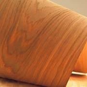 Шпон строганный на экспорт. Шпон буковый, дубовый, из ясеня (Экспорт пиломатериалов) фото