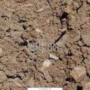Химический анализ почвы в Херсонской области. Экспертно-диагностический центр агрохимии и фитопатологии. Химический анализ неорганических объектов фото