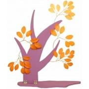 Витринное дерево Фикус Нава фото