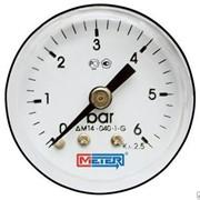 Термоманометр Метер ДМ02-ИТ фото