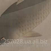 Фотокартина 25х25см код 140-25-25 фото