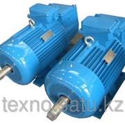 Электродвигатель 18,5 кВт 3000 об/мин фото