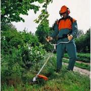 Услуга по стрижке газонов фото