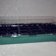 Мини парник на подоконник с тремя вставками (мини теплица) фото