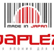 Японские IT-технологии: разработка информационных систем, сайтов, баз данных и т.д.. фото
