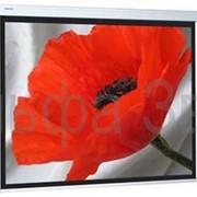 Экраны проекционные Targa фото