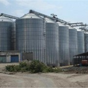 Зернохранилища под ключ, проектирование строительство зернохранилища в украине фото