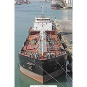 Поиск и подбор персонала, подготовка лиц для морской отрасли. фото