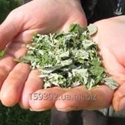 Листья малины сушеные фото