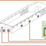 Продажа и монтаж птицеводческого оборудования фото