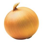 Семена лука Глобус фото