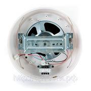 ROXTON WP-10T настенный громкоговоритель 10Вт/100В
