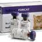 Вакцина для мелких животных NOBIVAC FORCAT
