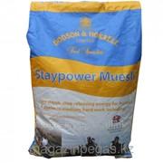 Кормовая добавка Staypower Mutsli. арт. 691426 фото