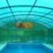 Покрытия из сотового поликарбоната для бассейнов