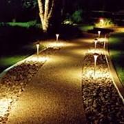 Декоративное освещение сада, в Молдове фото