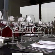 Автоматизация ресторанов, система iiko. фото