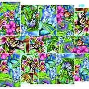 """Dona Jerdona слайдер дизайн """"Бабочки на цветах"""" 450 фото"""