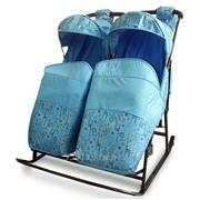 Санки-коляска ABC academy Зимняя сказка 3В Твин для близнецов или двойняшек фото