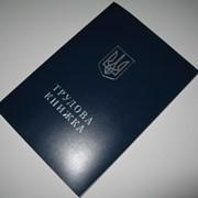 Трудовая книжка ТК фото