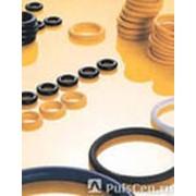 Уплотнения для гидравлики и пневматики из полиуретановых материалов фото