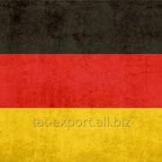 Экспорт в Германию фото