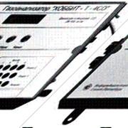 Газоанализатор угарного газа «Хоббит-Т-СО» стационарный (модель И-1052000 для котельных) фото
