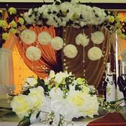 Свадебная арка из цветов фото
