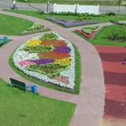 Благоустройство территории в Алматы фото