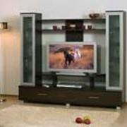 Стенки под телевизор фото