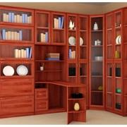 Мебель для библиотеки фото