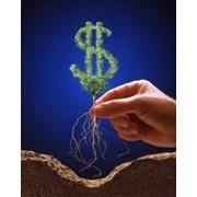 Привлечение клиентов в бизнес, Свой бизнес, Независимый бизнес. фото