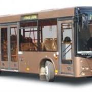Автобус МАЗ 103462 фото
