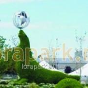 Каркас топиарной фигуры Морской Котик фото
