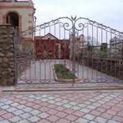 Ворота, калитки, двери фото