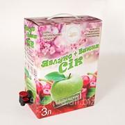 Короб Bag-in-Box 3 л фото