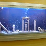Декорация для аквариума фото