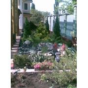 Озеленение садов фото
