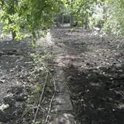 Расчистка участка. фото