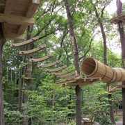 Веревочный парк, канатный городок, парк приключений фото