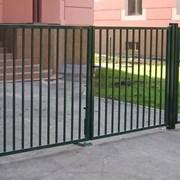 Ворота и Калитки. С бесплатной доставкой  фото