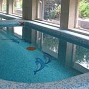 Дизайн, проектирование и строительство элитных бассейнов для дома и дачи. фото