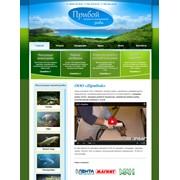 Создание web-сайтов по России: визитка, корпоративный, интернет-магазин. Разработка коммерческих бизнес-сайтов под ключ, а также индивидуальных личных веб-сайтов.