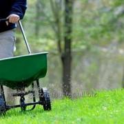 Услуга подкормки газонов фото