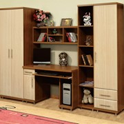 Мебель Система Дебют фото