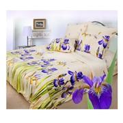 Комплект постельного белья Сова и Жаворонок Летнее утро, евро фото